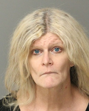 HOPE MAY KIM Info, Photos, Data, and More / Wake County Public Records