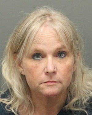 RAE BAINES PAMELA Info, Photos, Data, and More / Wake County Public Records