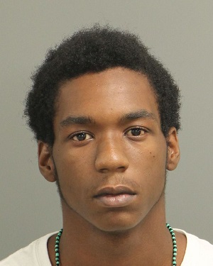 TYREE YOUNG SEMAJ Info, Photos, Data, and More / Wake County Public Records