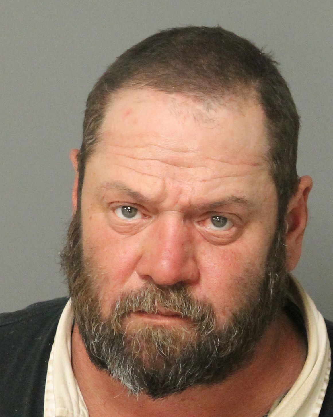 LANDON LUNSFORD MICHAEL Info, Photos, Data, and More / Wake County Public Records